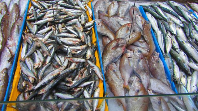 Etal de poisson a marseille par patapof.