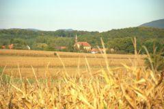 Campagne et village par Gewurtz.