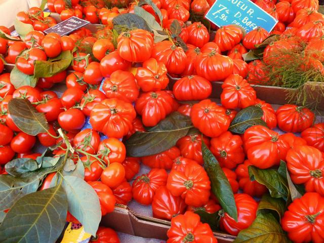 tomate-du-marche-de-nice-par-patapofdu75