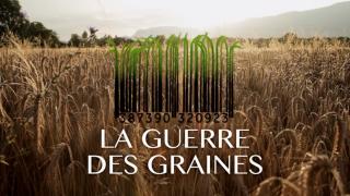 guerre-des-graines-640x360